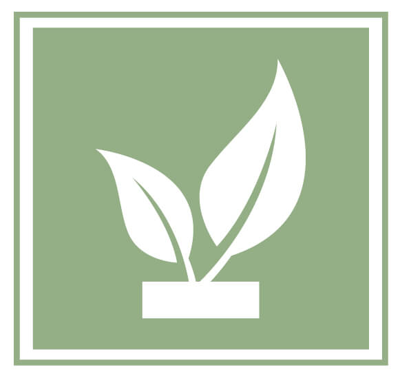 ecomenities logo 2 white leaves green background