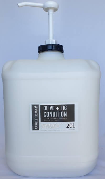Ecomenities Taylor Harrison Condition 20L